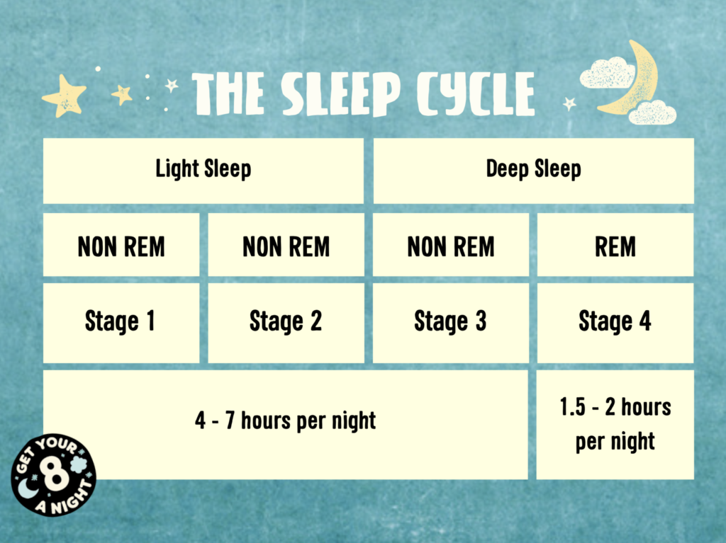 sleep cycle diagram